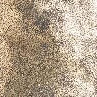 חול זהוב
