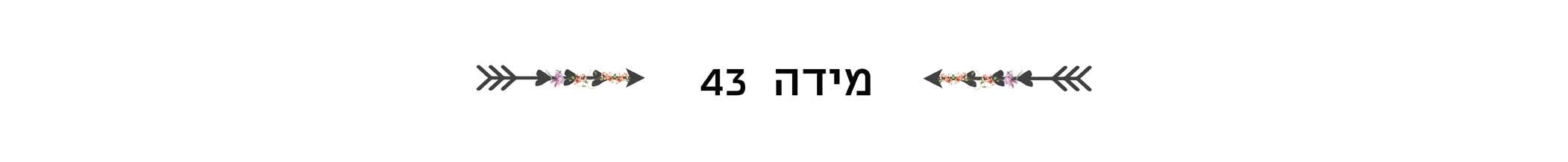 מידה 43